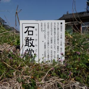 _DSC9639_samune